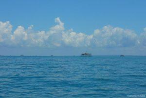 Jeden ze způsobů rybolovu používaných v Balikpapanském zálivu zahrnuje použití světel. Světla jsou namontována na těchto dřevěných stavbách v mělkých pobřežních vodách. Ryby jsou přilákány v noci silnými světly a jsou shromažďovány do sítí. Druhy získané touto technikou se liší od těch, které se nacházejí v mangrovech; hlavní kořistí jsou ryby rodu Decapterus sp. Ale s expanzí průmyslu, rostoucím znečištěním a hlukem pod vodou, je populace těchto ryb také v úpadku. Je to šílený paradox, že jsou rybáři nyní nuceni koupit si na trhu většinu ryb pro vlastní spotřebu - ryby, které byly shromážděny v čistších vodách daleko od Balikpapanského zálivu! Samozřejmě, jakmile jsou tisíce rybářů s žádným jiným příjmem donuceni kupovat ryby k jídlu, místní hospodářství směřuje do krize.