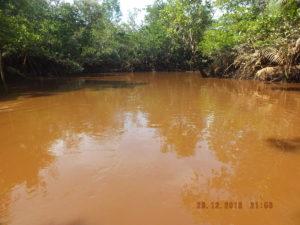 Zvýšený obsah sedimentů způsobuje žlutohnědé zbarvení vody a ztrátu její průhlednosti.